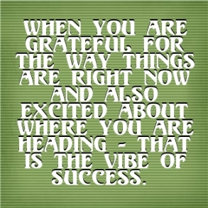 pq-vibe-of-success